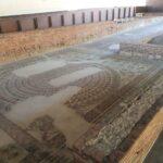 Restos mosaico Casa Anfiteatro